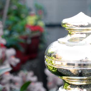 brass in garden