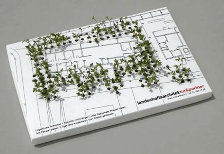 plants business card
